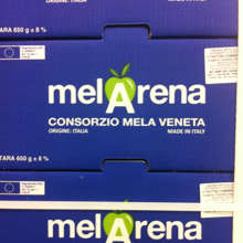 Mela made in Veneto: al via il marchio Melarena