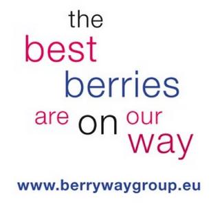 """Berryway Group: nasce il """"network"""" dei produttori di piccoli frutti"""