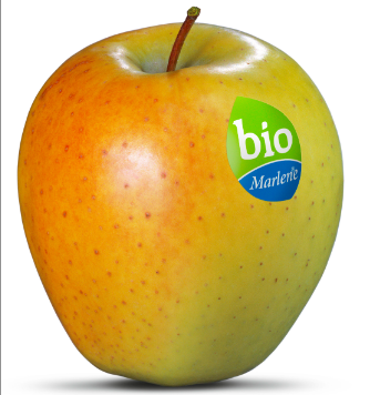 Bio Marlene Fruit Attraction