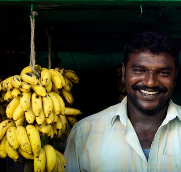 Banane indiane: un progetto per esportarle in tutto il mondo