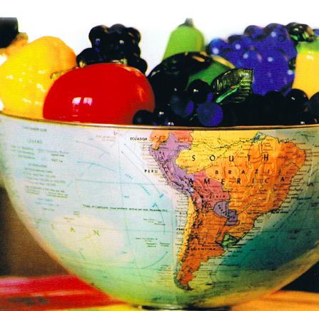 Paesi Bassi, Spagna e Cina sono i maggiori importatori di ortofrutta