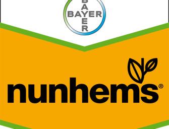 Nunhems diventa il brand Bayer Cropscience per le sementi di ortaggi