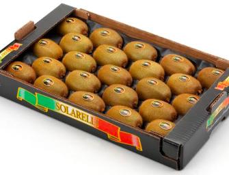 Bilancio 2013 positivo per Apofruit, bene kiwi e biologico