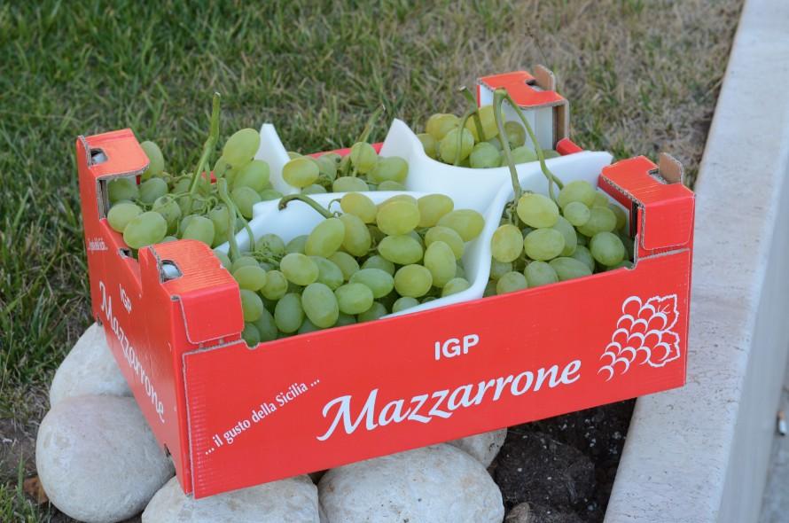 Un nuovo imballaggio per l 39 uva da tavola mazzarrone igp - Uva da tavola di mazzarrone ...
