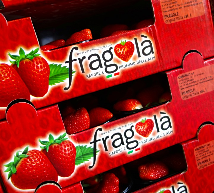Fragolà Kingfruit