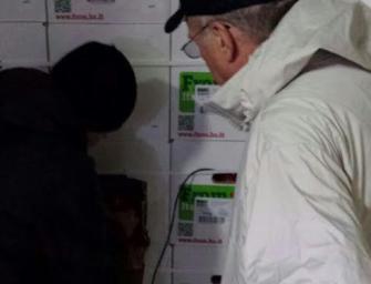 Mele, al via la seconda campagna Usa, partiti i primi container