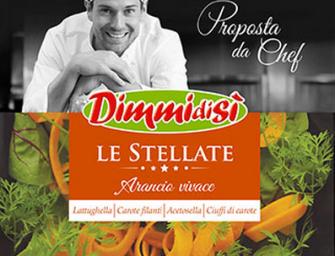 Dimmidisì Le Stellate, insalate pronte in tre ricette esclusive