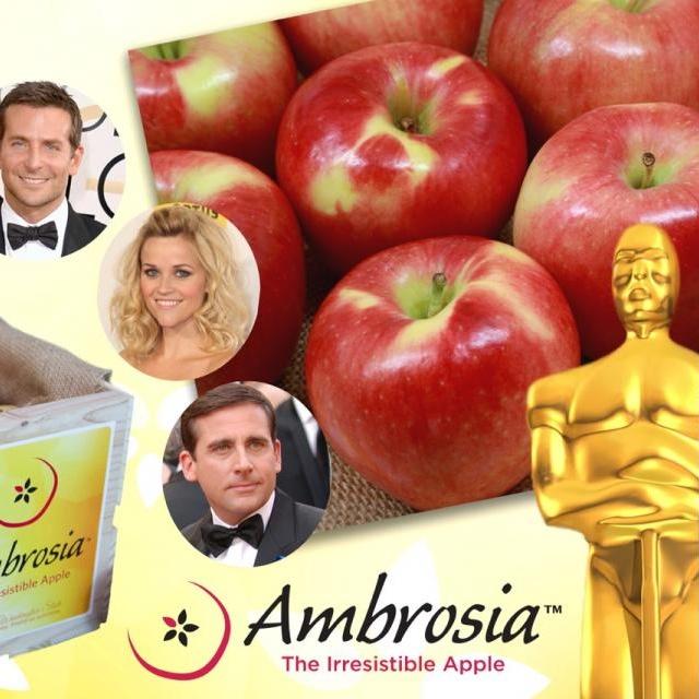Ambrosia Oscar 22-02-15