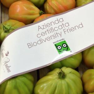 Biodiversity Pomodori
