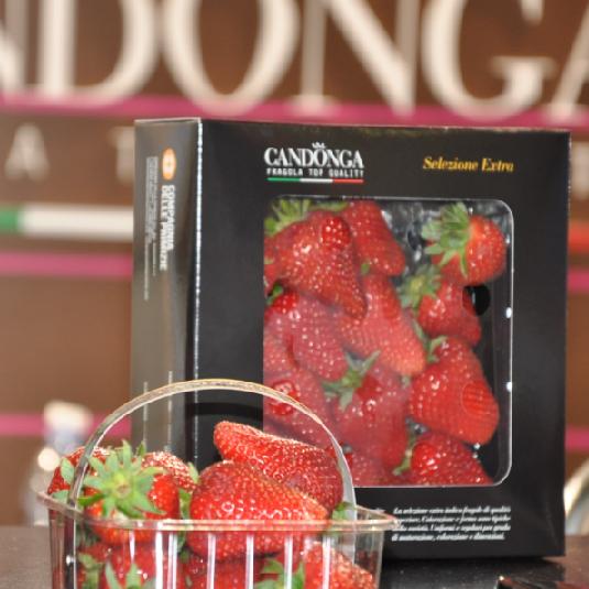 670b105dafda A TuttoFood Milano prosegue la promozione della fragola Candonga ...