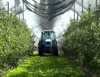 Greenpeace shock: meleti al veleno. E il settore va in pasto ai mass media