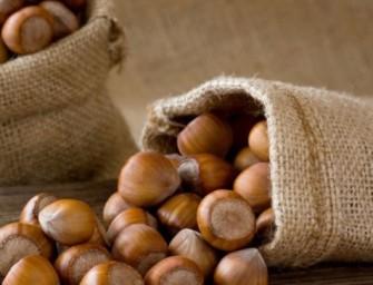 La Nutella con le nocciole di Sicilia: Ferrero cerca 5 mila nuovi ettari