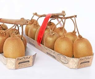 Dalla Spagna arriva un nuovo concept per il kiwi: il grappolo su ramo