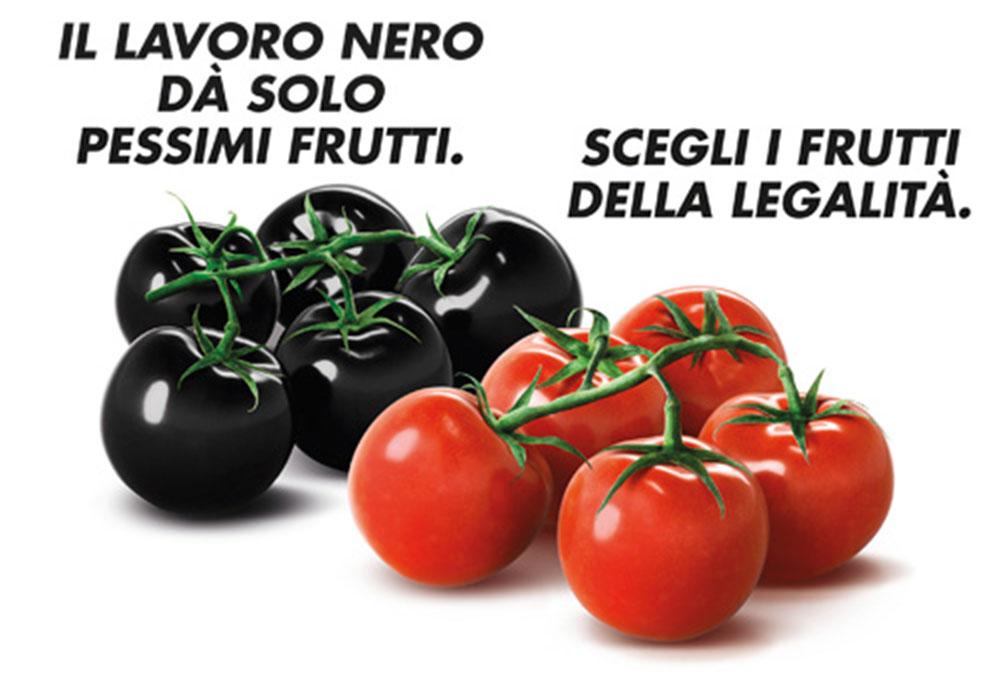 Lancio del pomodoro - 4 4