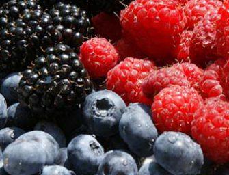 Piccoli frutti, un pieno di salute che merita più attenzione sugli scaffali