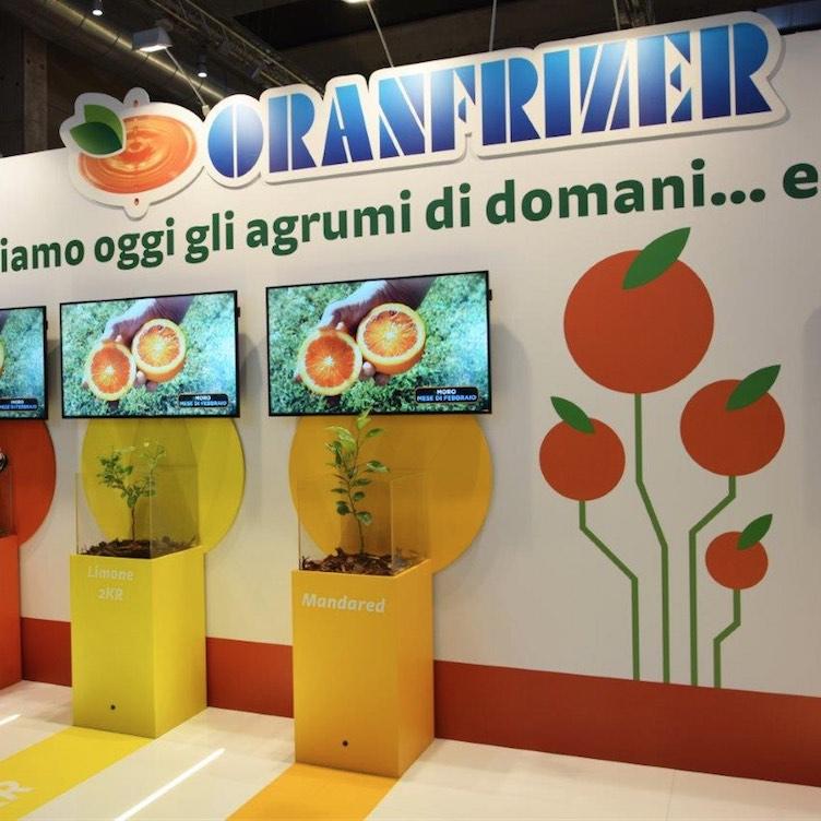 Mandared ippolito 2kr oranfrizer a cibus con gli agrumi for Calendario concimazione agrumi