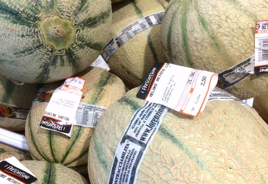 Meloni Lorenzini Alì