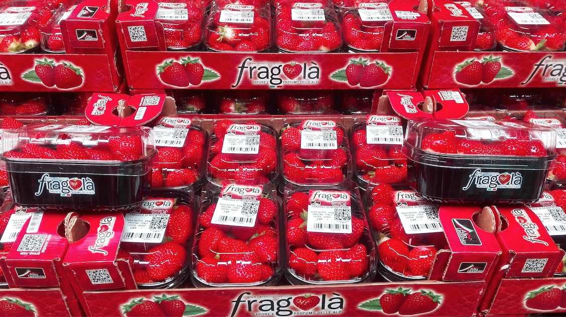 Fragolà pack