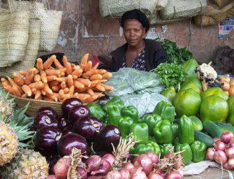 Missione in Africa con Omnibus. Focus su mercati e opportunità del Kenya