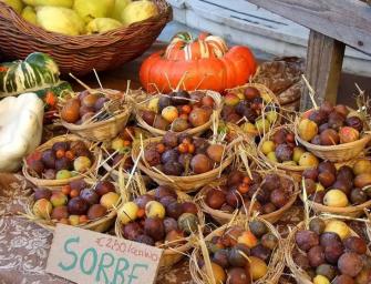"""Corbezzoli, azzeruole, sorbe? Sono i """"frutti dimenticati"""" di Casola Valsenio"""
