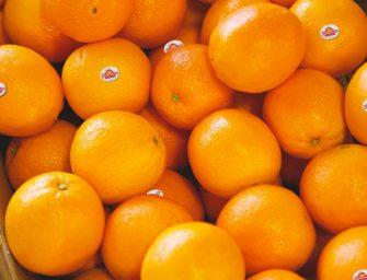 Rosaria, al via la campagna dell'arancia rossa dell'Etna