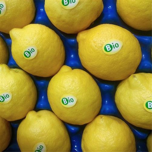 Limoni bio Villari