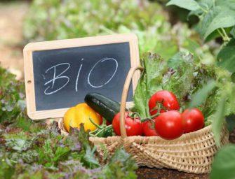 Agricoltura biologica: consumi in aumento, ma scarsa varietà produttiva e disinformazione. L'evento a Bologna