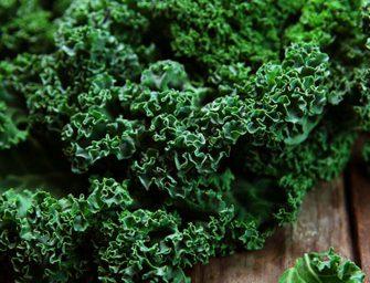 Kale, il superfood di tendenza: vendite al top negli Usa. Ma occhio al 'junk food'
