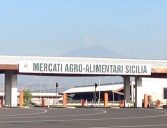 Italmercati a quota 10: con il Maas di Catania raggiunge l'80% dei volumi nazionali