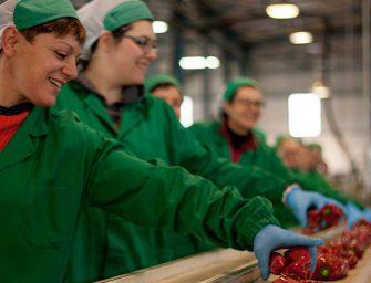 La siciliana Natura Iblea premiata per il miglior welfare aziendale