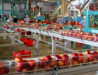 Agrintesa festeggia 10 anni con un valore della produzione che supera 290 milioni
