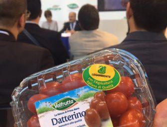 """Valfrutta porta sul mercato i pomodori sostenibili """"griffati"""" Legambiente"""