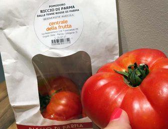 Pomodoro Riccio: il gusto antico dell'oro rosso di Parma nel packaging esclusivo