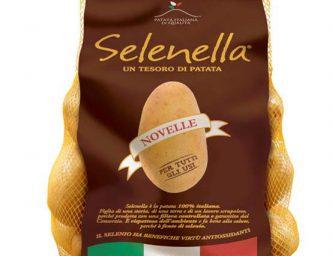 Tornano sui banchi le patate Novelle Selenella. La qualità è ottima