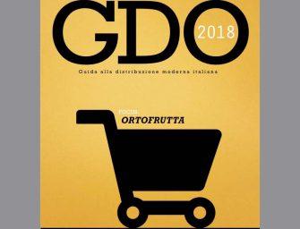 GDO italiana, focus ortofrutta: la nuova edizione della Guida a Fresh Retailer '17