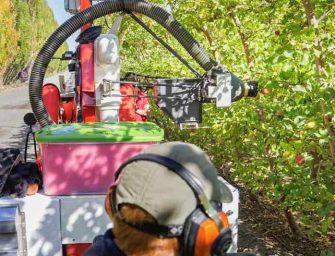 Tecnologia, ecco come la robotica ci aiuterà a raccogliere la frutta