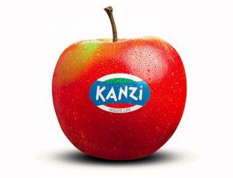 Kanzi, cresce il raccolto italiano (17.500 tons). Al via il concorso Kanzi Coins