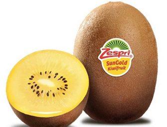 Kiwi Zespri SunGold, aumenta del 30% la produzione italiana del kiwi giallo
