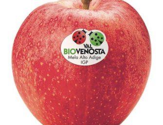 Bio Val Venosta: danni dal gelo e quantità ridotte ma biologico è in crescita