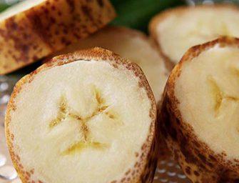 Dal Giappone arriva la banana con la buccia che si mangia. Si chiama Mongee