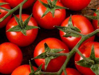 Pomodorini dal Camerun sui banchi di un supermercato di Pachino: 'agro-fake'?