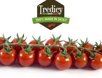 Tredicy: il ciliegino 100% siciliano consolida la sua brand awareness