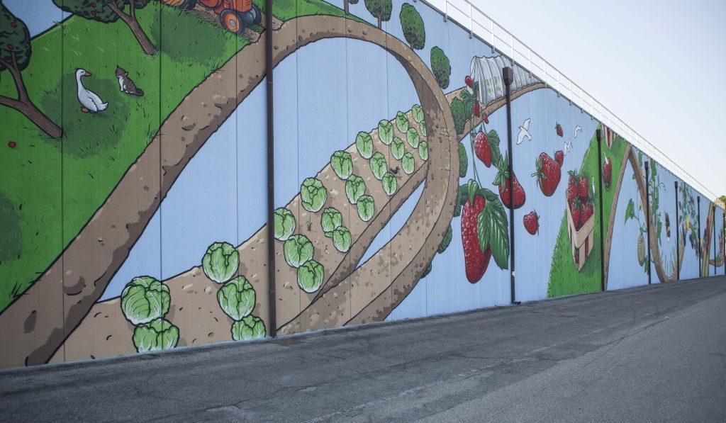 APO Scaligera murales