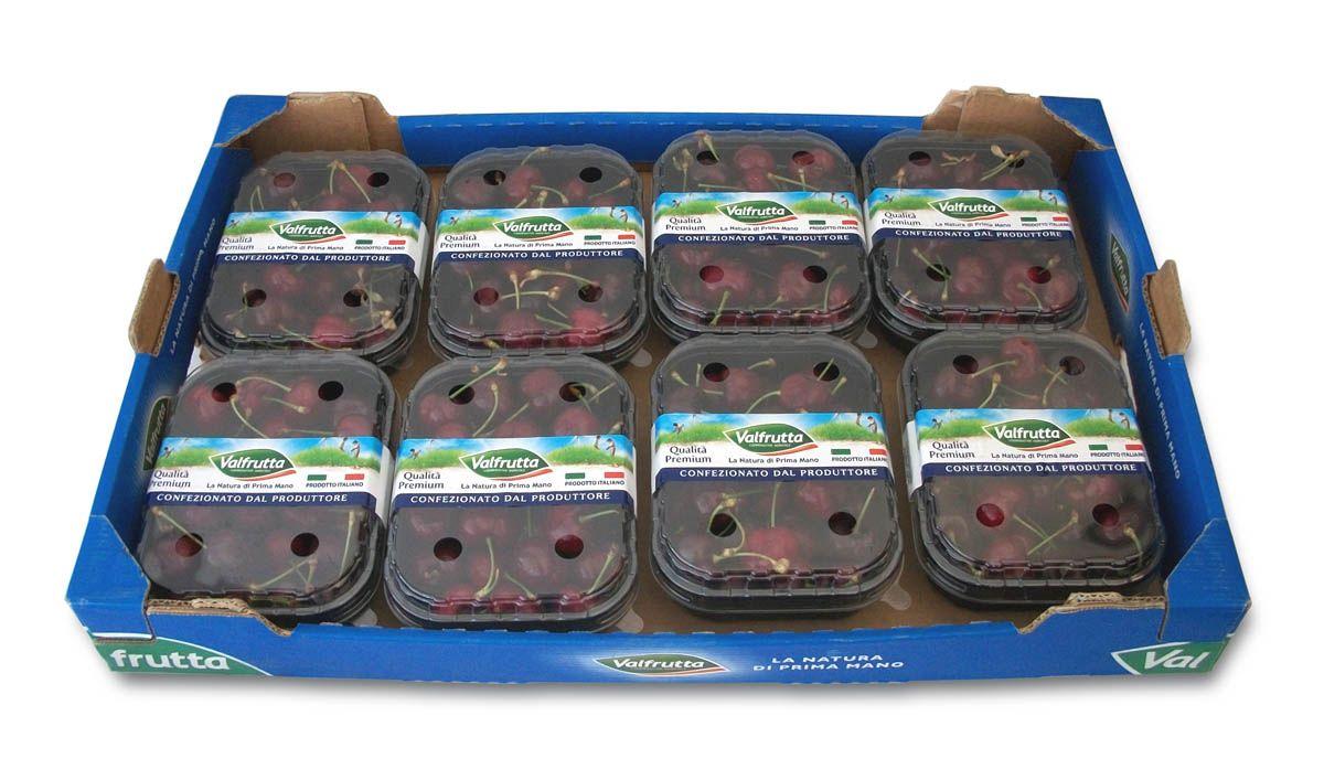 Le ciliegie di Vignola Igp, del Gruppo Alegra