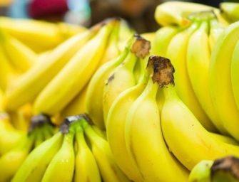 """Aldi, in Ecuador i produttori di banane fanno quadrato: """"Prezzi troppo bassi"""""""
