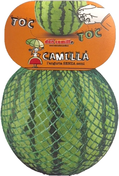 Camilla anguria packaging