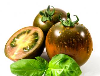 iLcamone: Syngenta lancia il brand del pomodoro di Sicilia e Sardegna