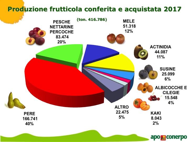Apo Conerpo frutta