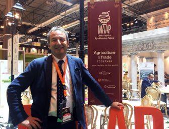 """L'eredità di Marchionne secondo il direttore del MAAP. """"Spunti per i centri agroalimentari"""""""