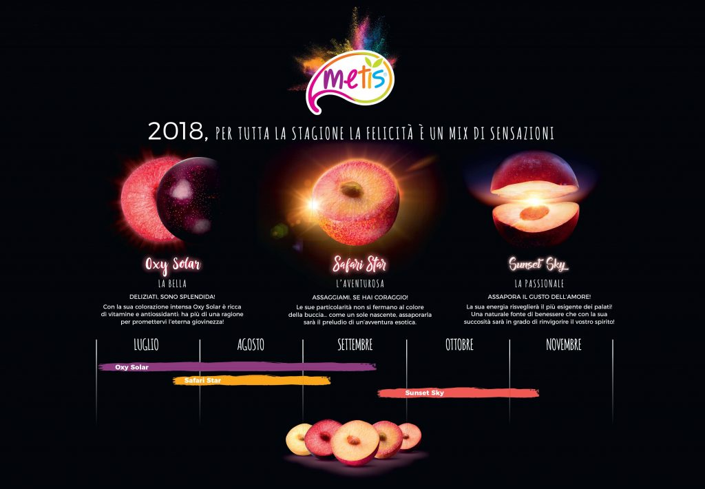 Metis concept 2018